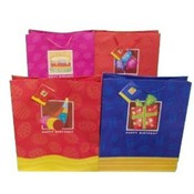 Large Window Birthday Gift Bag