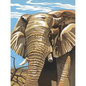 Reeves Medium Paint By Number Kits 9'X12'-Elephants Wholesale Bulk
