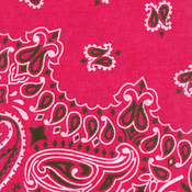 Have-A-Hank Paisley Bandannas 22&quot;X22&quot;-Hot Pink
