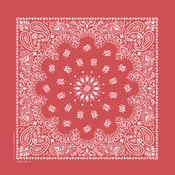 Stonewash Bandannas 20&quot;X20&quot;-Red Paisley