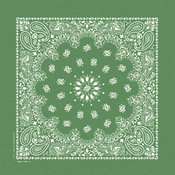 Stonewash Bandannas 20&quot;X20&quot;-Kelly Green Paisley
