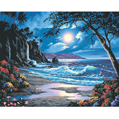 Paint By Number Kit 20&quot;X16&quot;-Moonlit Paradise