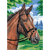 "Mini Colour Pencil By Number Kit 5""X7""-Horse"
