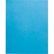 Posterboard Royal Blue 22X28In Wholesale Bulk