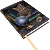 Embossed Journal: Fortune Teller