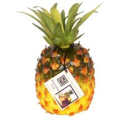 Linens N Things Decorative Tropical Pineapple Wholesale Bulk