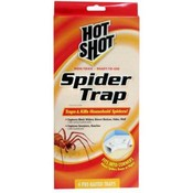 Hot Shot 4 Count Spider Traps