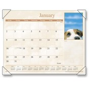 "At-A-Glance  Monthly Desk Calendar,12-Month Jan-Dec,Puppy Images,22""X17"""