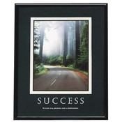 "Advantus Corp.  ""Success"" Poster, 24""x30"", Black Frame"