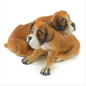 Wholesale Pet Breed Products