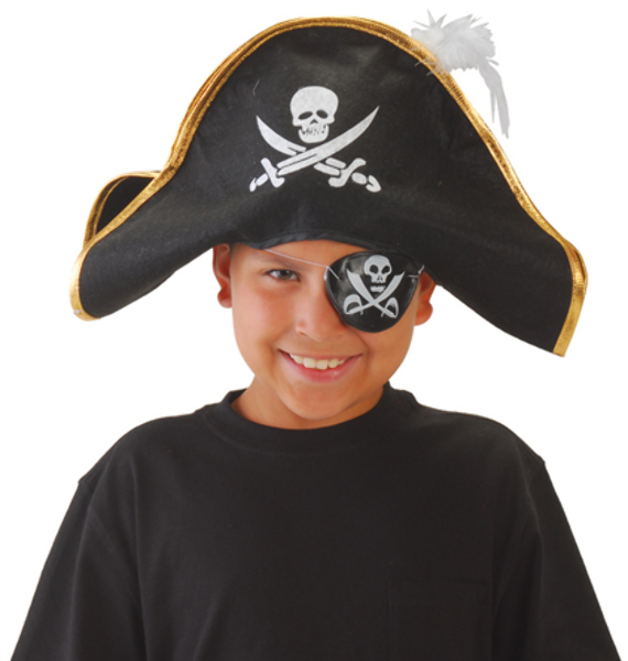 SKULL and Crossed Swords Pirate Hat with Feather (1904358)