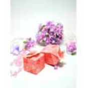 Pink Cherry Blossom Favor Boxes
