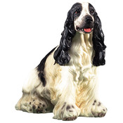 "7"" Dog - English Springer Spaniel Figurine"