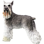 7&quot; Schnauzer Figurine