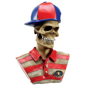 Collectible- Skull - Skater