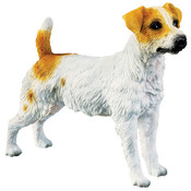 7&quot; Jack Russell Terrier Figurine