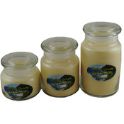 Citrus Fresh Odor Eliminator Soy Candle - 3 Pack