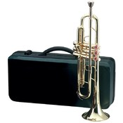 Wholesale Brass Instruments - Wholesale Brass Family Instruments