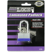 Blue Bumper Lock