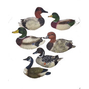Poly Stone Duck Decoy Magnets