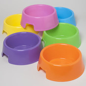 Pet Bowl 9In 72 Oz 6 Colors