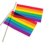 Plastic Rainbow Flag